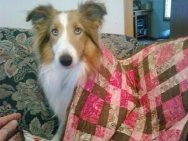 Adora with her quilt.